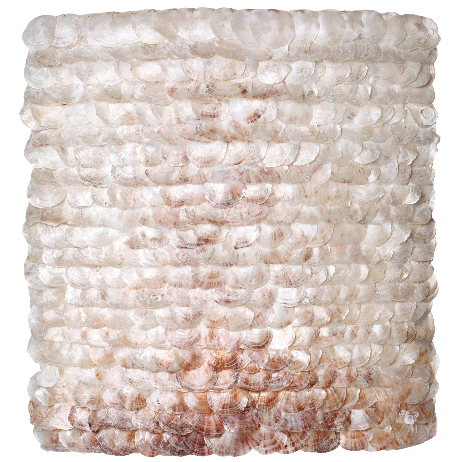 Mural object with Placuna shells, some of which pink-red (rare). 105x105 cm. The mother-of-pearl in the shells reflects the incoming light. Contemplation