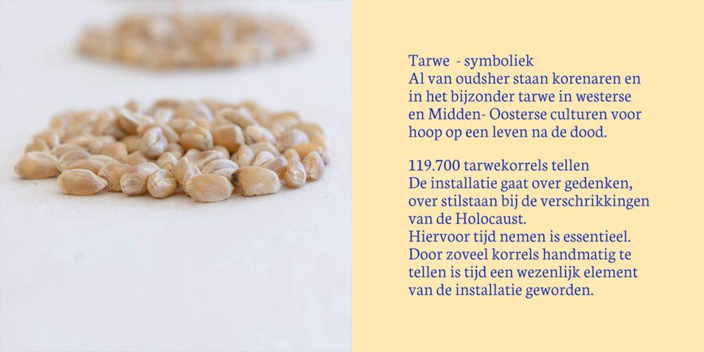 Gedenkinstallatie Koningsstraat | over de symbolische betekenis van tarwe in diverse culturen en het handmatig tellen als wezenlijk onderdeel van de gedenkinstallatie.